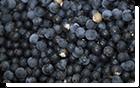 натуральные acaiberry900 ингредиент